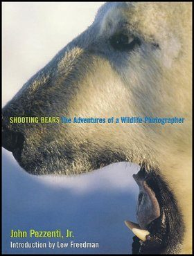 Shooting Bears