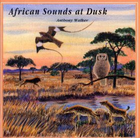 African Sounds at Dusk / Nuits Africaines