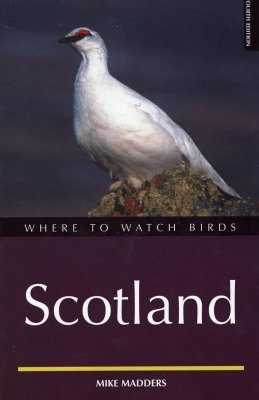 Where to Watch Birds in Scotland
