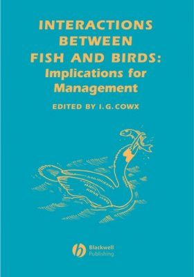 Interaction Between Fish and Birds