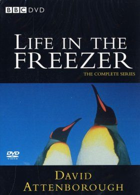 Life in the Freezer - DVD (Region 2 & 4)