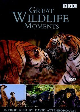 Great Wildlife Moments with David Attenborough - DVD (Region 2 & 4)