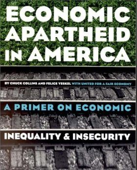 Economic Apartheid in America