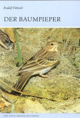 Der Baumpieper (Tree Pipit)