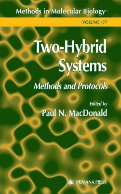 Two-Hybrid Systems