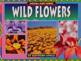 Wild Flowers of Southern Africa
