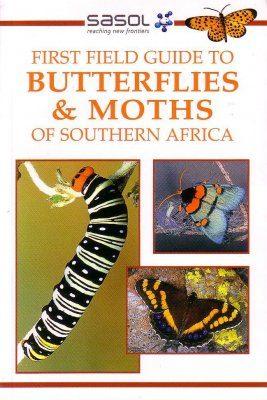 First Field Guide to Butterflies and Moths of Southern Africa
