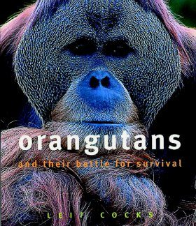 Orangutans and their Battle for Survival