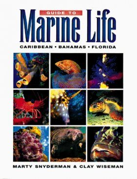 Guide to Marine Life