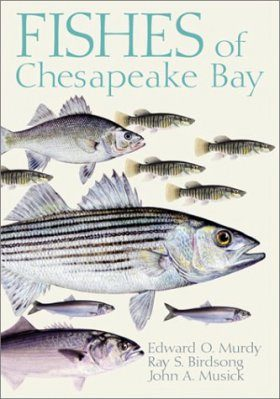 Fishes of Chesapeake Bay