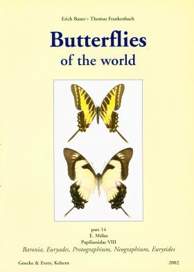 Butterflies of the World, Part 14: Papilionidae VIII: Baronia, Euryades, Protographium, Neographium, Eurytides