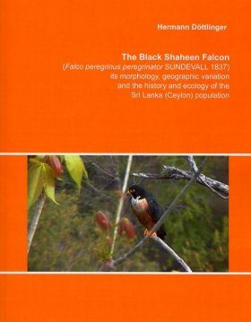 The Black Shaheen Falcon (Falco peregrinus peregrinator Sundevall 1837), its Morphology, Geographic Variation and the History and Ecology of the Sri Lanka (Ceylon) Population