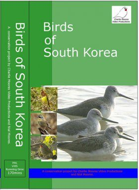 Birds of South Korea