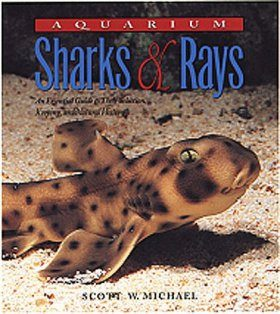 Aquarium Sharks and Rays