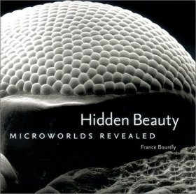 Hidden Beauty: Microworlds Revealed