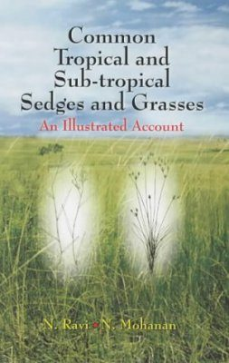 Common Tropical and Sub-Tropical Sedges and Grasses