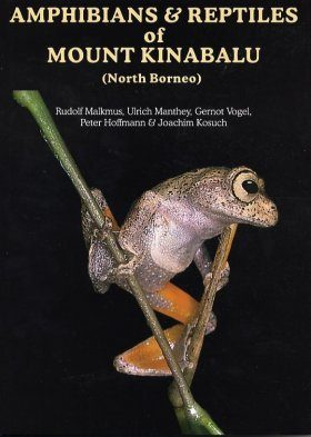 Amphibians and Reptiles of Mount Kinabalu