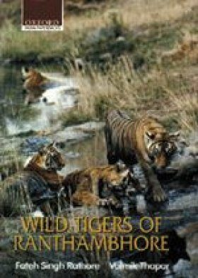 Wild Tigers of Ranthambore