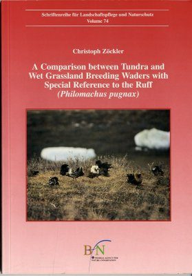 A Comparison between Tundra and Wet Grassland Breeding Waders with Special Reference to the Ruff (Philomachus pugnax)