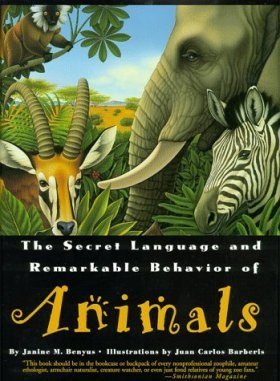 Secret Language and Remarkable Behaviour of Animals