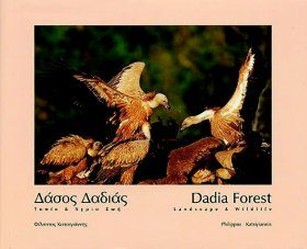 Dadia Forest
