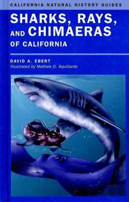 Sharks, Rays, and Chimaeras of California