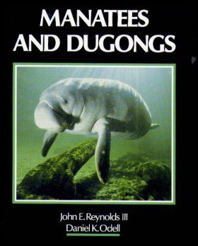 Manatees and Dugongs