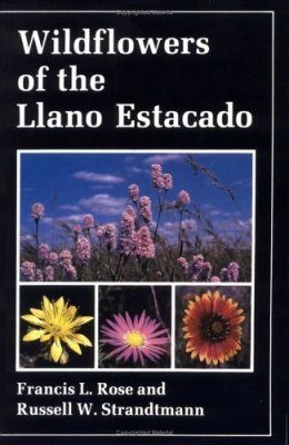 Wildflowers of the Llano Estacado
