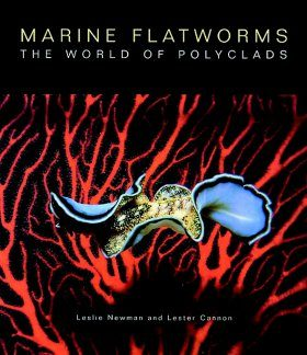 Marine Flatworms