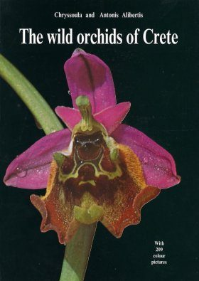 The Wild Orchids of Crete
