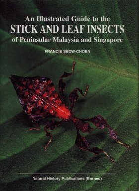 An Illustrated Guide to the Stick and Leaf Insects of Peninsular Malaysia and Singapore