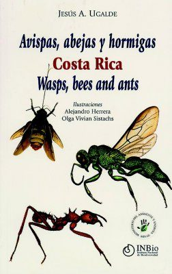 Wasps, Bees and Ants - Costa Rica