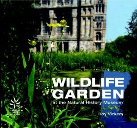 The Wildlife Garden at the Natural History Museum