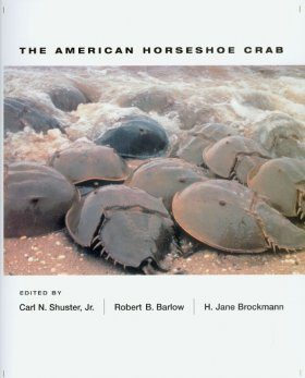 The American Horseshoe Crab