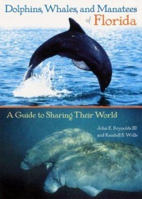 Dolphins, Whales, and Manatees of Florida