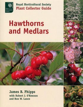 Hawthorns and Medlars