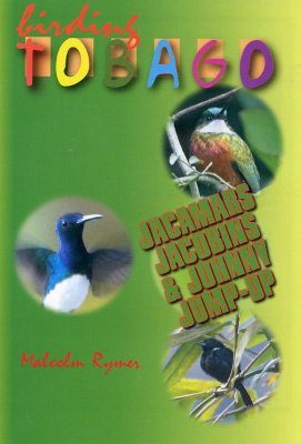 Birding Tobago (All Regions)
