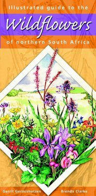 Illustrated Guide to the Wild Flowers of Northern South Africa
