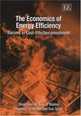 The Economics of Energy Efficiency