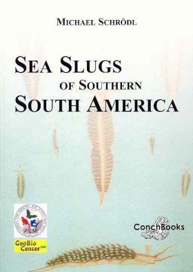Sea Slugs of Southern South America