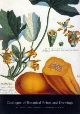 Catalogue of Botanical Prints and Drawings at the National Museums and Galleries of Wales