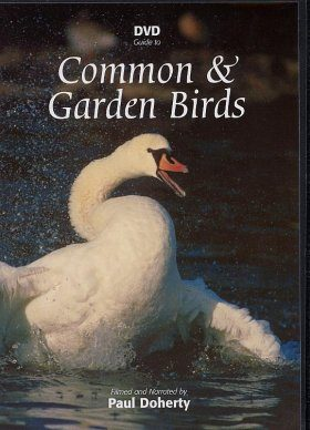 DVD Guide to Common and Garden Birds (All Regions)