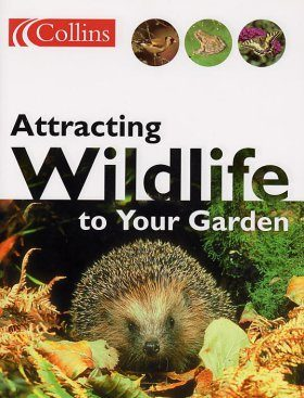Attracting Wildlife to Your Garden