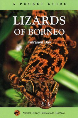 A Pocket Guide: Lizards of Borneo