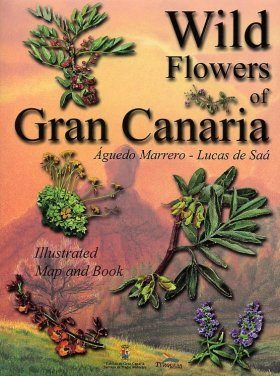 Wild Flowers of Gran Canaria