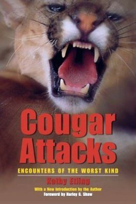 Cougar Attacks