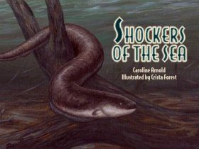 Shockers of the Sea: And Other Electric Animals