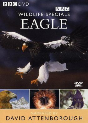 Eagle - DVD (Region 2 & 4)