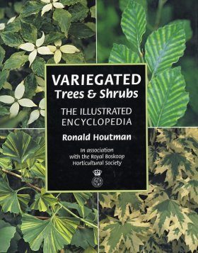 Variegated Trees and Shrubs