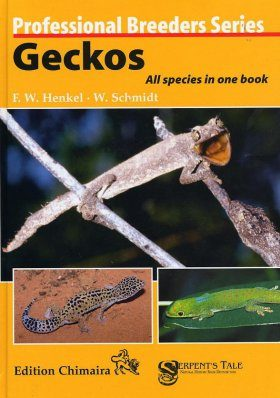 Geckos: All Species in One Book